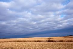 Markotny sceniczny rolniczy krajobraz fotografia stock