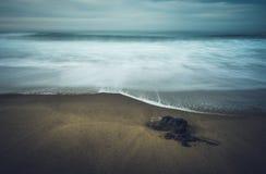 Markotny spokojny skalisty morze obraz stock