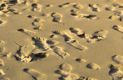 Marks of footspeps in fine sand Stock Photos