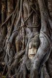 Markstein von Ayutthaya-Provinz in Thailand stockbild