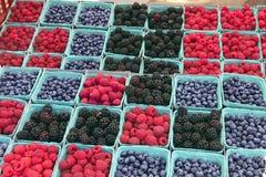 Markt-Beeren #2 der Landwirte Stockbilder