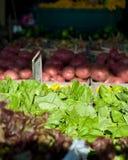 Markt-Bildschirmanzeige des Landwirts Stockfotografie