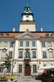 Markt in de stad van Jelenia Gora Royalty-vrije Stock Afbeeldingen