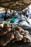 Markt, der frische Fische verkauft Lizenzfreie Stockfotos