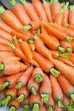 Markt-frische Karotten, Nepal Lizenzfreies Stockbild
