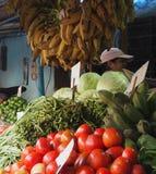 Markt im Freien in Havana Cuba Lizenzfreie Stockfotografie