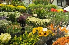 Markt van bloemen Royalty-vrije Stock Afbeeldingen