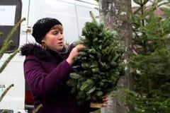 Markt van Kerstbomen in Uzhgorod Royalty-vrije Stock Afbeeldingen
