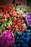 Marktblumen Lizenzfreie Stockfotografie