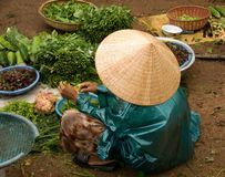 Marktfrau,Vietnam. A vietnamese market women to sell vegetables Royalty Free Stock Photo