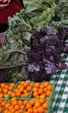 Marktgemüse und -frucht des Landwirts stockbild