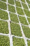 Marktstall, der Oliven verkauft Stockfotos