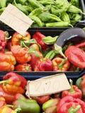 Markttag Stockbilder