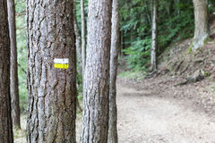 Markup on hiking path Royalty Free Stock Photo
