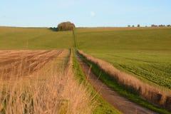Marlborough-Abstiege, Wiltshire, England lizenzfreie stockbilder