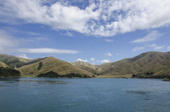 Marlborough sonda la Nuova Zelanda Fotografie Stock Libere da Diritti