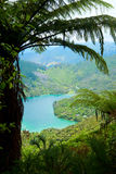 Marlborough Sounds Stock Photos