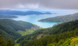 Marlborough Sounds. Scenic bird's eye view of Oyster Bay near Picton in New Zealand's South Island Royalty Free Stock Image