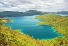 The Marlborough Sounds Stock Image