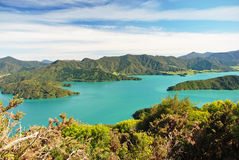 The Marlborough Sounds Royalty Free Stock Images