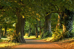 Marley Park in Dublin  Stock Photo