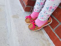 New shoes pix. Marleys birthday shoes Stock Photography