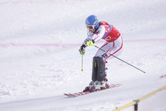 Marlies Schild - alpine skier winner Royalty Free Stock Photos