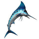 Marlin 02. The Marlin fish is one of the fastest swimming predators of our oceans and is a favorite catch for deep sea fishing Royalty Free Stock Images