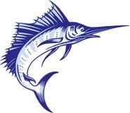 Marlin Illustration Stock