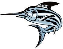 Marlin azzurro Immagine Stock