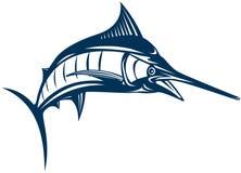 Marlin bleu Photos libres de droits