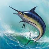 Marlin bleu illustration stock