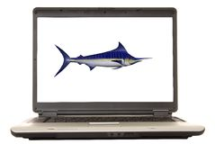 Marlin d'ordinateur portatif Images stock