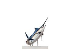 Marlin - espadon, isolat de poissons de mer de pélerin (Istiophorus) Image stock