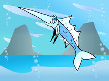 Marlin fish Royalty Free Stock Photos
