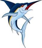Marlin fish Royalty Free Stock Photos