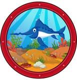 Marlin fish cartoon Stock Photography