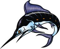 Marlin fish Royalty Free Stock Photo