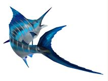 Marlin Fish Tail Stock Images