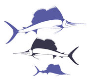 Marlin Royalty Free Stock Image