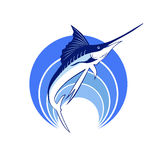 Marlin Makaira Stock Images