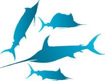 Marlin,  sailfish vector. Vector illustration silhouettes of marlin, spearfish, sailfish and sword-fish Stock Photos
