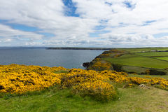 Marloes and St Brides bay West Wales coast near Skoma island Royalty Free Stock Images