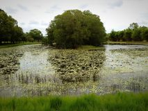 Marlow lagun Arkivfoton