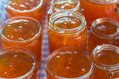 Marmalade in jam jars Stock Images