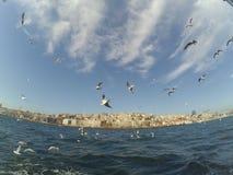 Sea. Marmara Sea in Turkey, trip and boat trip beautiful views stock image