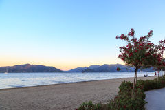 Marmaris beach with oleander tree during sunset Royalty Free Stock Images