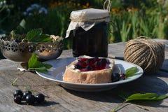 Marmelade der schwarzen Johannisbeere lizenzfreie stockfotografie