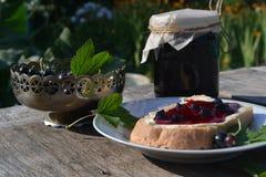 Marmelade der schwarzen Johannisbeere lizenzfreies stockfoto