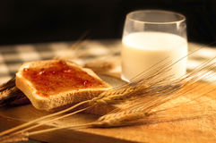 Marmelade et lait Photo libre de droits
